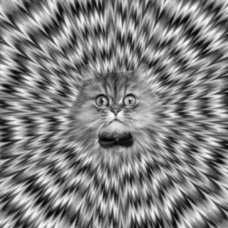 Illusion of deception