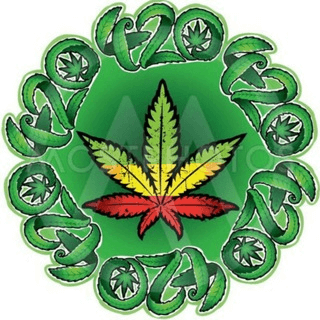 Weed in Zürich🇨🇭😎👌✌