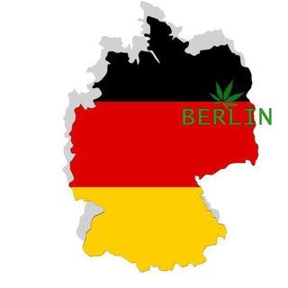 BERLIN WEED FOR GORMETS 🤪💪😎