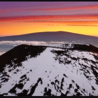 Big Island Survival