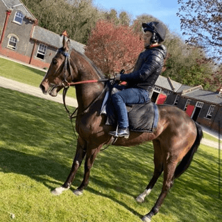 THE HORSE RACING BLOGGER TIPS