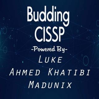 Budding CISSPs 📚